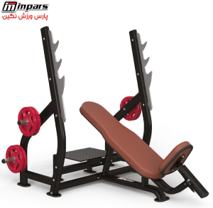 Bodybuilding benches